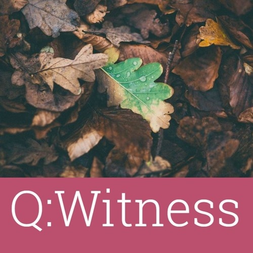 #21 – Q:Witness – Spiritual activism