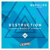 Debris & RudeLies - Destruction Radio 048 2017-09-29 Artwork