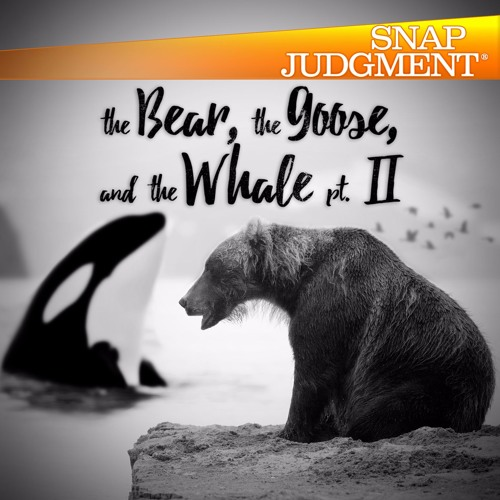 "Listen to the entire Snap Judgment episode ""The Bear, The Goose and The Whale (Part 2)"