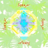 Mountie - SORRY