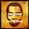 yellow fever an ode to fela kuti