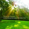 Terry Lee Nichols - At Peace Beneath The Shade Of My Father's Tree - Train To Dachau