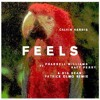 Calvin Harris Feat Pharrell Williams & Katy Perry - Feels (Patrick olmo Remix) - Free Download