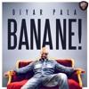 Diyar Pala - Bana Ne (Official Audio)
