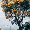 Wonder (Hillsong United Cover)