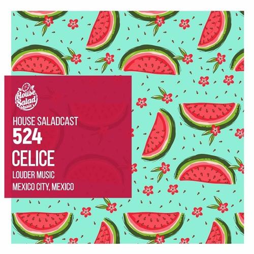 House Saladcast 524 | Celice