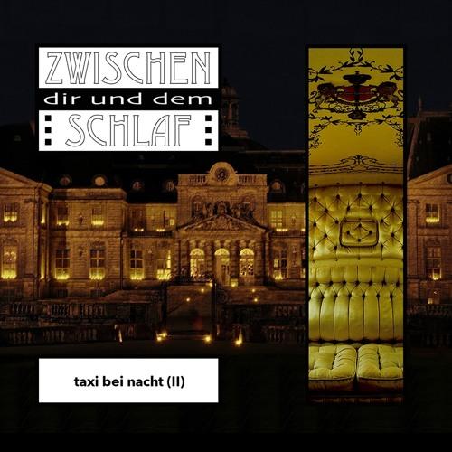 taxi bei nacht (II)