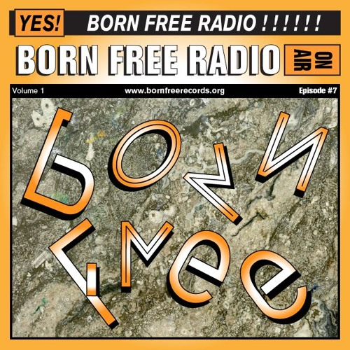BORN FREE Radio 7 - Your Planet is Next - Live from B.F.C.