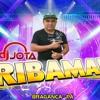 CD DJ JOTA RIBAMAR PASSADÃO VOL 09