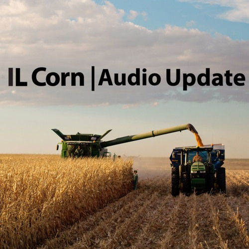 10-3-17 Illinois Hogs and Pigs Numbers Grow, Improves Corn Demand Outlook