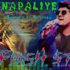Swarnapaliye-_Sanuka  ft Sajitha Antoniyo-_ Electro ft Dubstep-Hi-Bass mix_-DJ FlasH $tyle-_.mp3