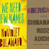 Episode 13 - Diaspora & Return from Americanah to We Need New Names