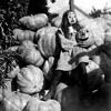Cherub Rock (Smashing Pumpkins Cover)
