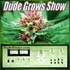#74 Dude Grows Show Growing Marijuana:What's Growing On: Leafly, Starting Seeds for Outdoor and Cypress Hill & Durban Poison