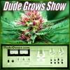 Dude Grows Show 230 Growing Marijuana Growtalk