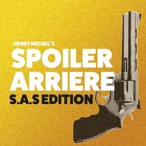 SAS 153 : Chapitre 16