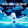 Justin Levai - Never Gonna Let You Go