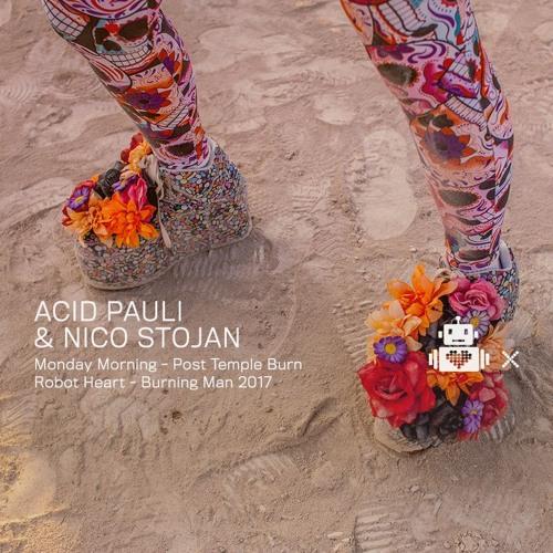 Acid Pauli & Nico Stojan - Robot Heart 10 Year Anniversary - Burning Man 2017