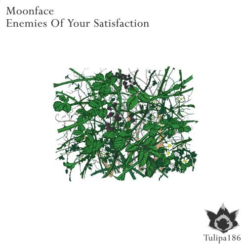 Moonface - Revolution (Original Mix)