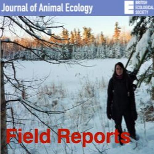 Journal of Animal Ecology: Field Reports, episode 5 Julie Morand-Ferron