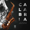Cat Dealers & Groove Delight - Calabria (Extended Mix)