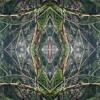 Ciàlis vs Kamàgra   Darkness At The Forest - FDLR Podcast 013   150 BPM