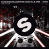 Bassjackers vs. Breathe Carolina & APEK - The Fever (Extended Mix)[OUT NOW]
