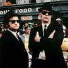 Jailhouse Rock - Blues Brothers - Just Zosia Cover