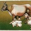Tập 77 - Phản biện Bác sĩ Duy Pham về Sữa bò