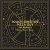 Touch Sensitive - Pizza Guy (Kenny Beeper Remix)**See Description