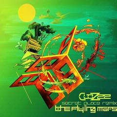Clozee - Secret Place (The Flying Mars Remix)