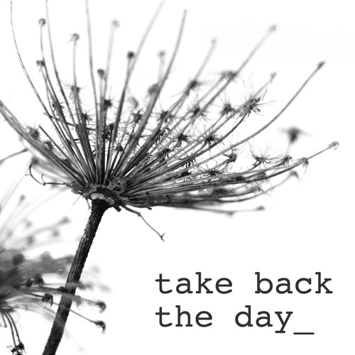 Take Back the Day - Tiny
