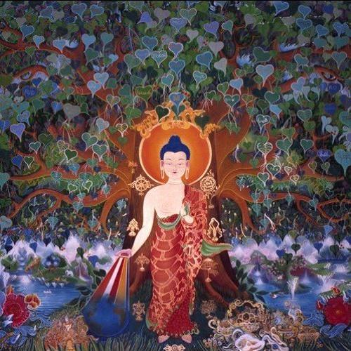 Curare la propria mente, insegnamenti di buddhismo tibetano di Lama Michel Rinpoche