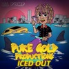 """Iced Out"" ft. 2 Chainz (Instrumental)"