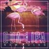 Dua Lipa - New Rules - Funk Remix.mp3