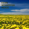 MARIGOLD (Pop | Melody | Instrumental | Music for Video)