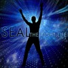 Seal - The Right Life (ROCAsound Mix)
