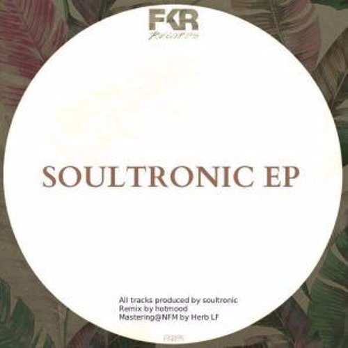 Soultronic - A Day At The Beach [FKR Records] [MI4L.com]