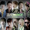 Super junior Mr Simple