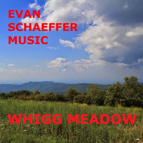 WHIGG MEADOW (Future Pop | Synths | Instrumental | Music for Video)