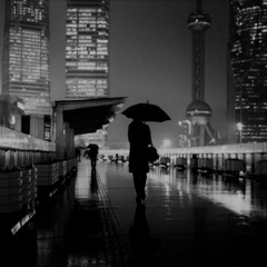 in the shadows of shanghai