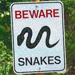 Snakes in the grass (Prod. Beatz Era) ( Mixed Az Parsons)