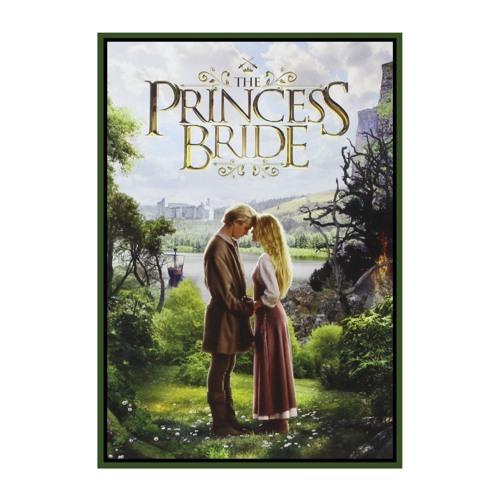 Press Rewind - The Princess Bride