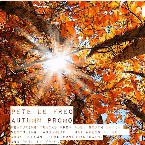 Pete Le Freq Autumn Promo