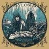 Leech Sylosis guitar cover