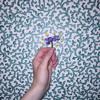 Charlie Burg - One, Violet - Intentions feat. daniel james, Eddie Codrington (CC-BY-NC-ND)