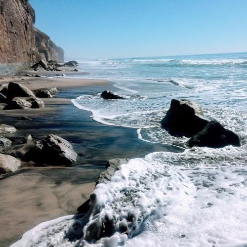 Locals Insider: San Diego, California