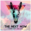 Download Donkey Dust - The Next Now (ft Nina Sung) Mp3