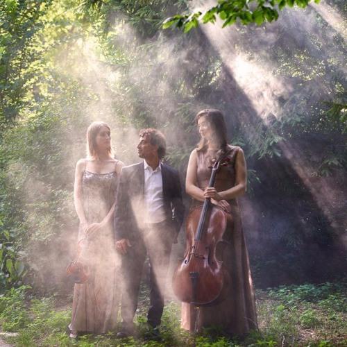 Felix Mendelssohn: Piano Trio No. 2 in C Minor, Op. 66 - Allegro energico e con fuoco