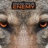 Know Your Enemy: Part 4 (Part 2)